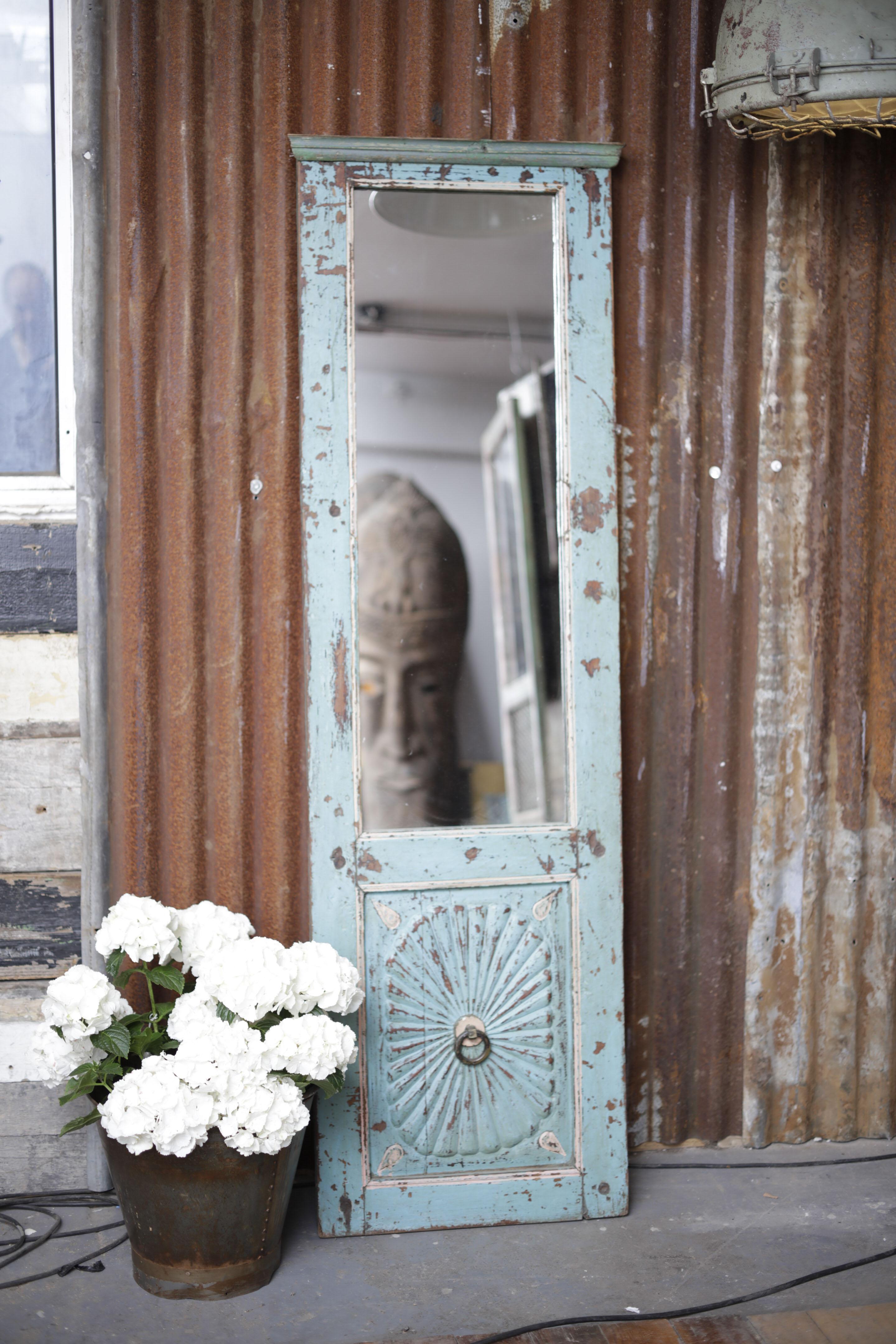 Ornate Mirror Door Panel
